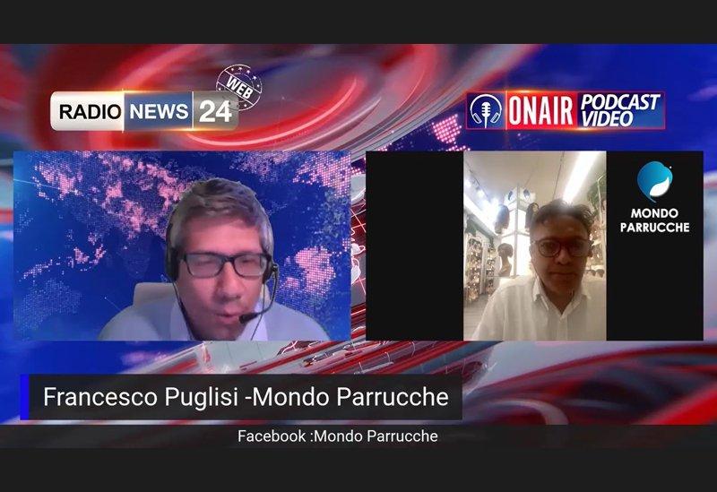 Francesco Puglisi (ideatore di Mondo Parrucche) ospite a Radio News 24